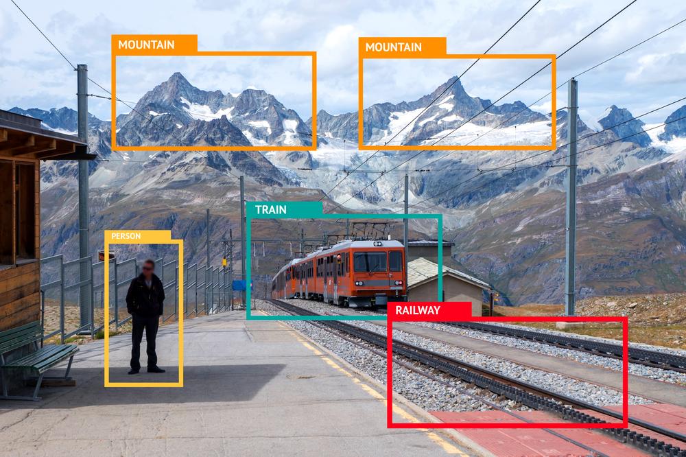 機械学習による画像認識の様子
